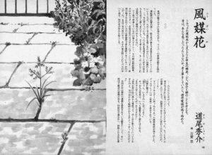 小説すばる 2009年1月号「風媒花」道尾秀介