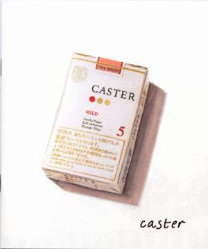 JTキャスターマイルド パンフレット 2008
